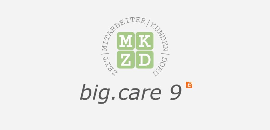big.care 9 Logo grau