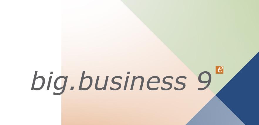 big.business 9 für Dienstleister
